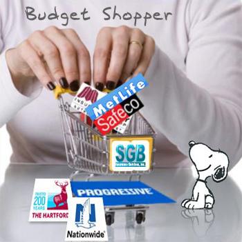 Budget Shopping Insurance in Murrieta