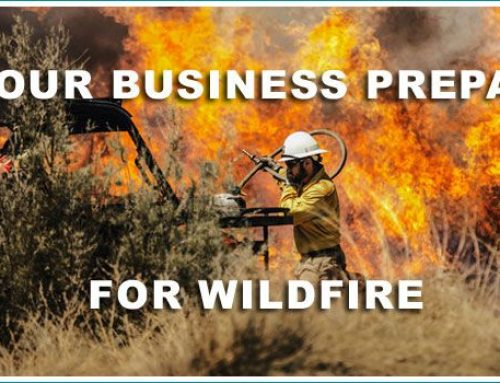 Preparing Your Business For A Wildfire